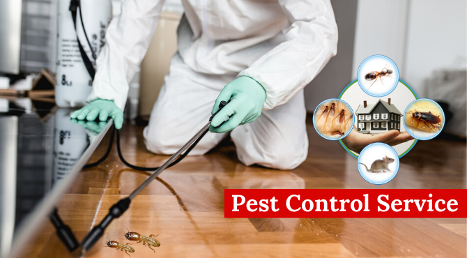 residential pest control services near me